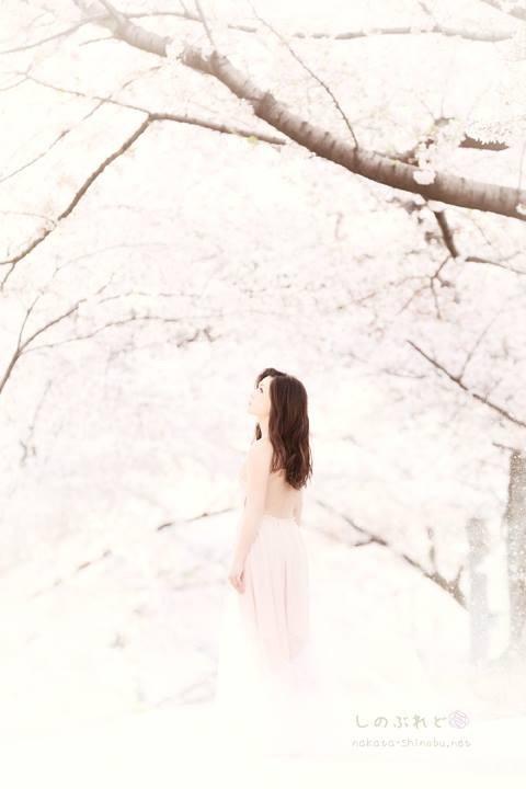 Sakura014