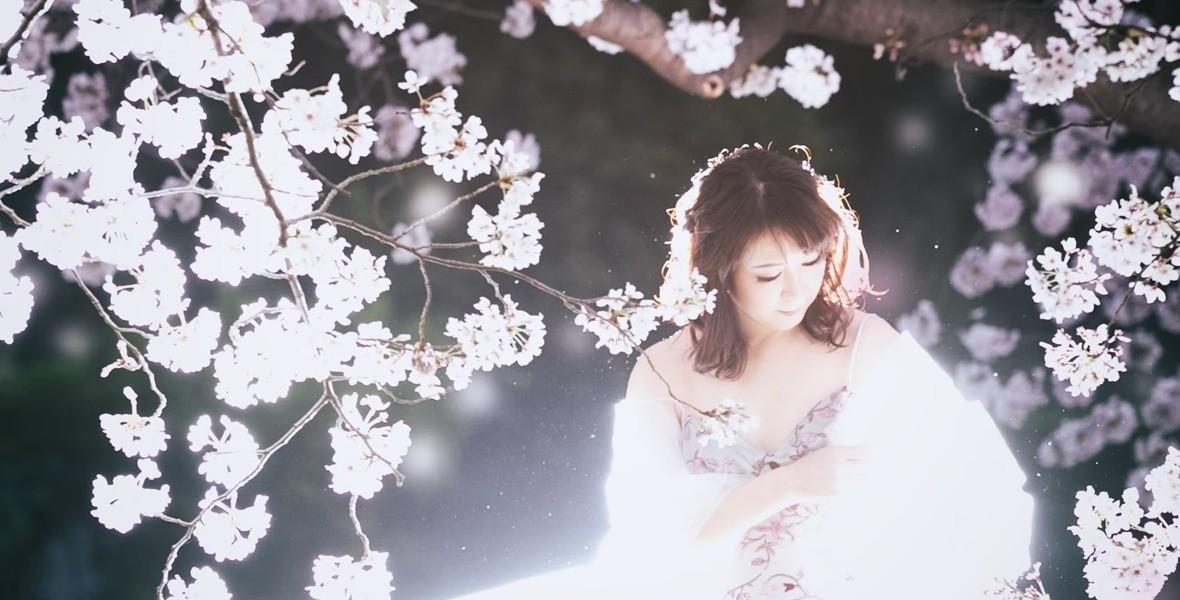 Sakura016