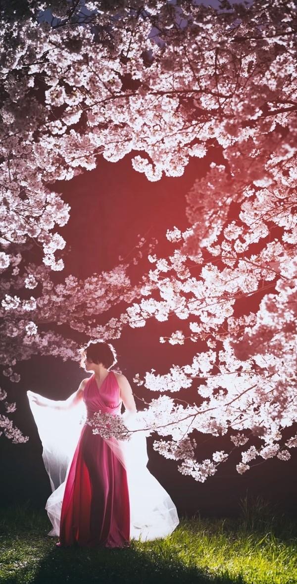 Sakura019