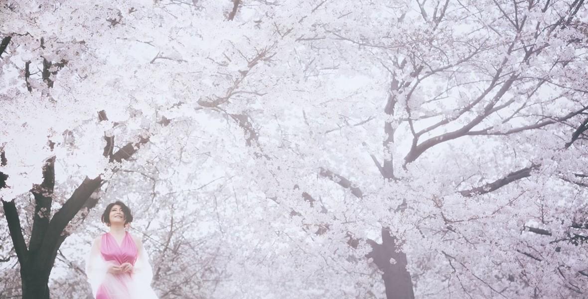 桜天女 vol.2 No.021 – 040