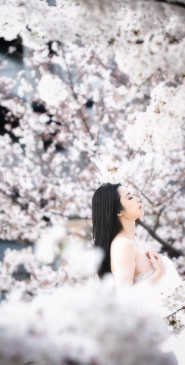 Sakura030