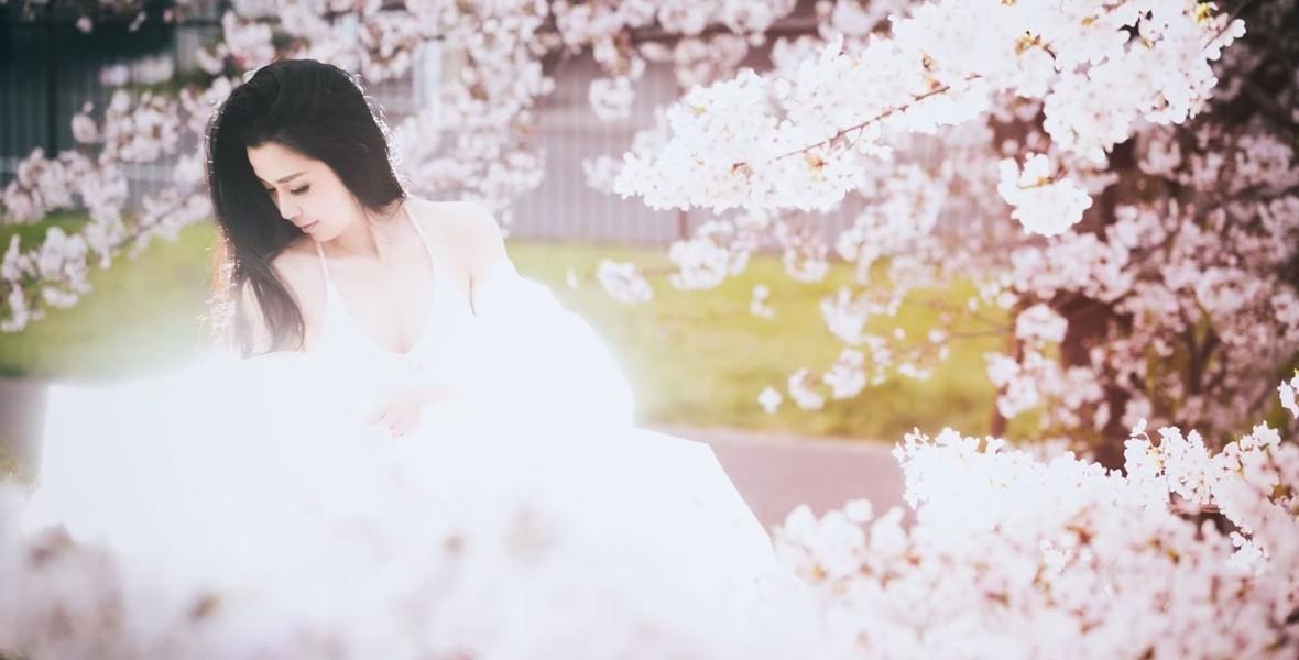Sakura033